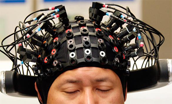 Ученые нашли в мозгу