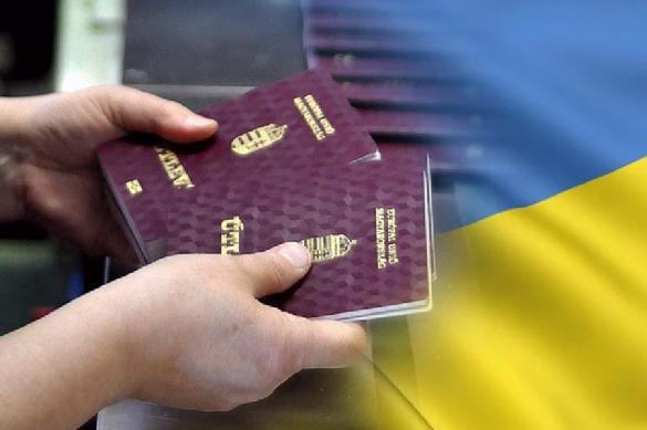 Без предупреждения: Венгрия начала раздачу паспортов в Закарпатье. 392089.jpeg
