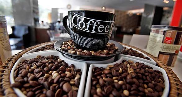 Ученые: Три чашки кофе в день снижают риск Альцгеймера на 20%. 305090.jpeg