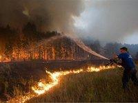 Пожарные на Амуре поджигали лес ради премий. 270092.jpeg
