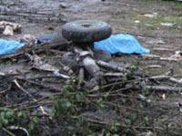 В Подмосковье при отработке аварийной посадки рухнул самолет. 241094.jpeg