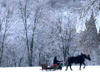 Якутские морозы могут стать приманкой для туристов. 251098.jpeg