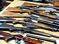 Житель Челябинска хранил у себя десятки винтовок, карабины и