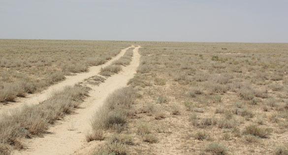 Назарбаев предлагает называть Казахстан Страной великой степи.