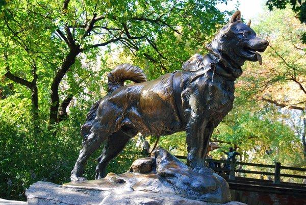 Памятники преданности, любви и самоотверженности. Памятник собаке Балто