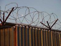 Осужденные за убийство сбежали из психбольницы в Ленобласти. 259101.jpeg