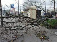 Тысячи людей остались без света в Новгородской и Псковской