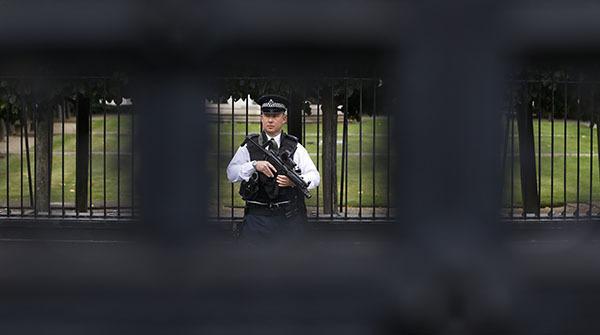 Скотленд-Ярд арестовал 15-летнего подростка из-за страха перед терактами.
