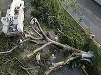 Число жертв урагана в Польше достигло семи человек