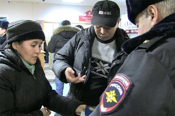 До 500 000 рублей вырастут штрафы для россиян за помощь нелегальным мигрантам. 379114.jpeg