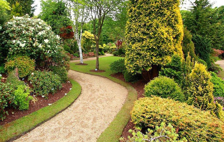 Как создать экосад на своем участке?. Экологический сад