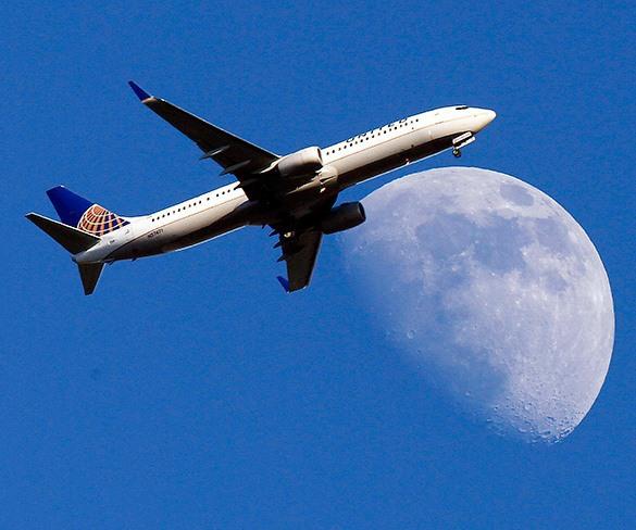 Итальянские ученые работают над паутиной, способной удержать самолет.