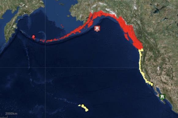 Срочное предупреждение в США: Аляску может смыть цунами. Срочное предупреждение в США: Аляску может смыть цунами