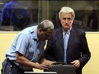 Прокуроров просят ускорить процесс над Караджичем