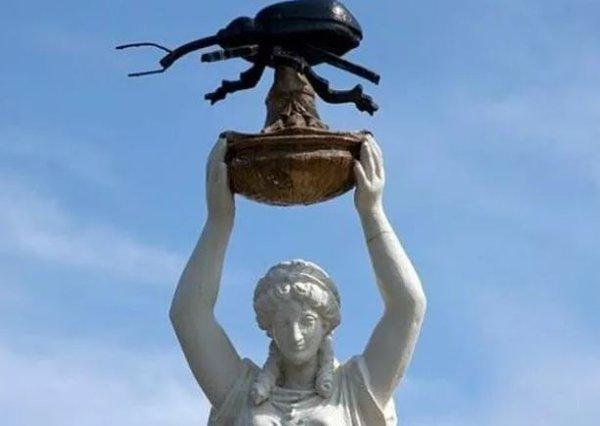 Необычные памятники насекомым. Долгоносик
