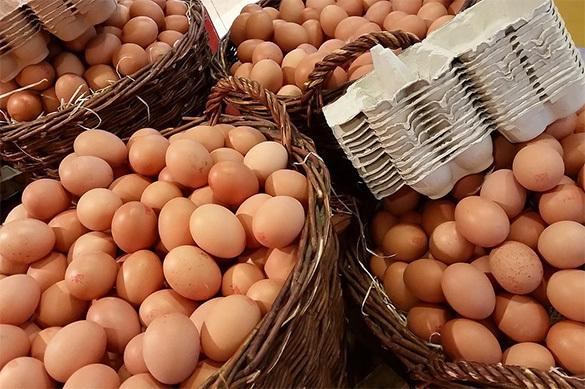 """""""Отравленные"""" куриные яйца чуть не докатились  до России. 376126.jpeg"""