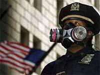 Свиной грипп атакует крупнейший американский мегаполис