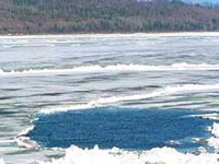 В Финском заливе ушел под лед автомобиль с людьми