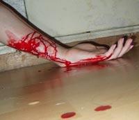 В ЮАР студент с топором и лопатой устроил кровавое побоище