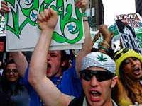 Ради борьбы с кризисом Калифорния может легализовать марихуану