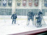 Стартует 76-й чемпионат мира по хоккею. 258132.jpeg