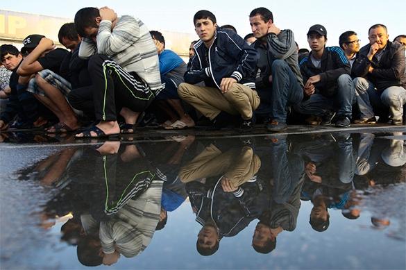 Закон суров! США пообещали депортировать 270 из 300000 индийских