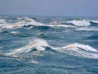Робот заснял самую глубокую точку мирового океана