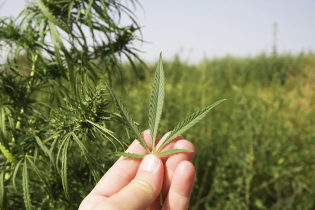 Массовые отравления неизвестным наркотиком зафиксированы в Кировской области.