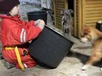 В Хабаровском крае найдена шестилетняя девочка-