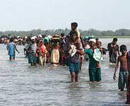 Тамильские тигры призывают ООН содействовать прекращению огня