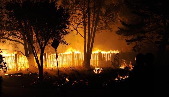 Пожар в Новосибирской области локализован