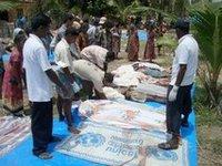 Тамильские тигры продолжают сопротивление, несмотря на призывы
