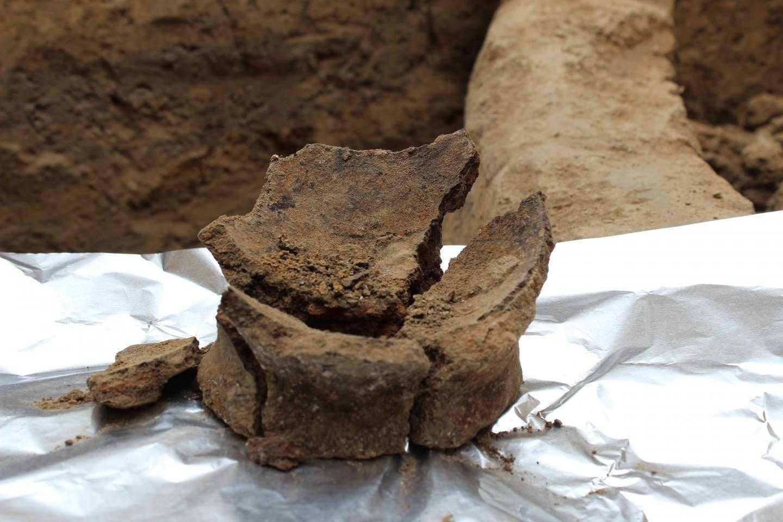 В Грузии нашли вино возрастом восемь тысяч лет. В Грузии нашли вино возрастом восемь тысяч лет