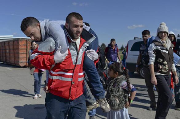 Дания избавится от мигрантских гетто. 389148.jpeg