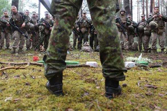 Никто не спасет: жителям Прибалтики приказано воевать самим. 391151.jpeg