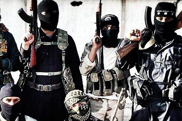 О подготовке терактов в Европе рассказал пленный боевик ИГИЛ. О подготовке терактов в Европе рассказал пленный боевик ИГИЛ