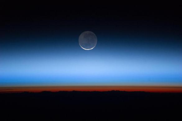 Названы причины массового вымирания на Земле в древности. 383155.jpeg