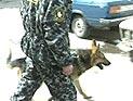 ПРОДОЛЖЕНИЕ ИСТЕРИИ В МОСКВЕ: Бомбу нашли в школе
