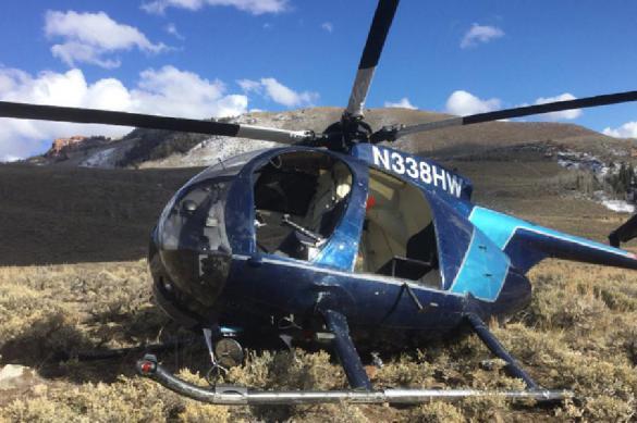 Лось погиб, сбив вертолет с охотниками. Лось погиб, сбив вертолет с охотниками