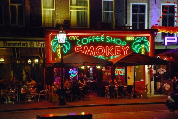 Амстердам: на Празднике марихуаны покайфовать не удастся?. Амстердам: Кубок марихуаны
