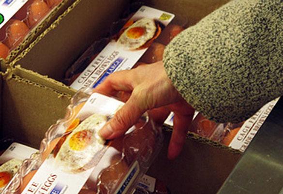 Эпидемия птичьего гриппа в США: стоимость яиц достигла абсолютного максимума. Продажа яиц