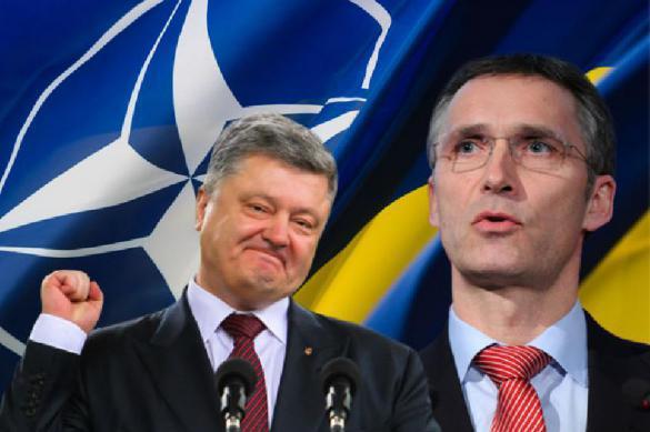 КС Украины дал зеленый свет на интеграцию с НАТО и ЕС. 395164.jpeg