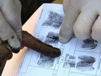 Отсутствие отпечатков пальцев - признак мутации. 243165.jpeg