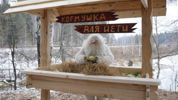 В Челябинской области привечают снежного человека. 395167.jpeg