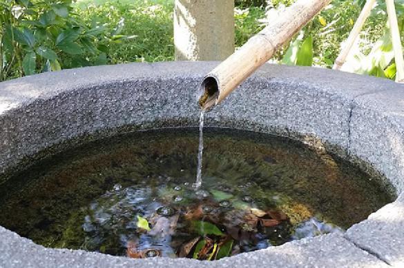 Власти разрешили дачникам бесплатно качать воду. 383170.jpeg