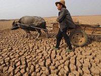 От засухи пострадали 25 млн китайцев. 239171.jpeg