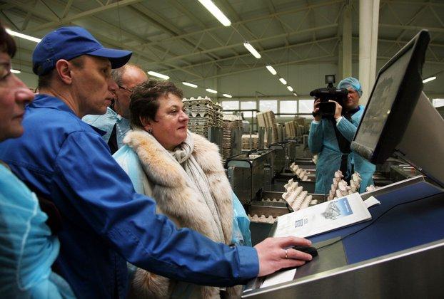 Глава Владимирской области: село должно стать двигателем нашей экономики. 303173.jpeg