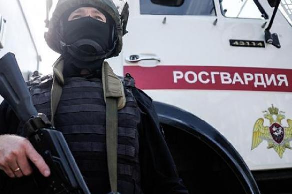 Житель села в Костромской области во время уборки нашел во дворе боевые гранаты. 403177.jpeg