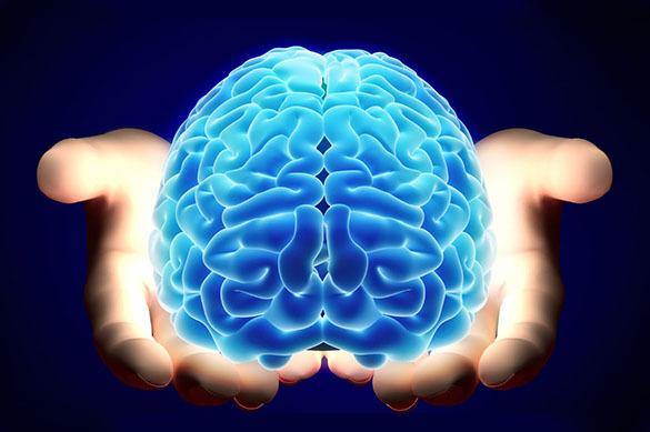 Топ-5 тайн человеческого мозга. 377178.jpeg