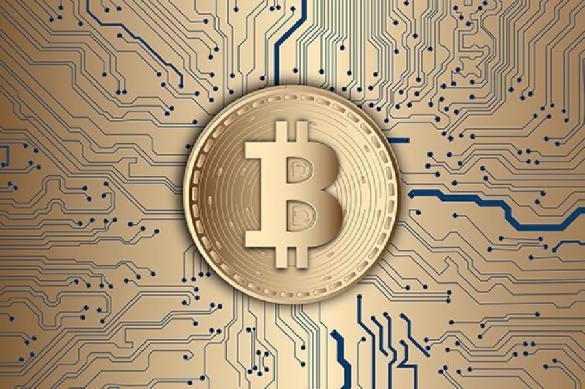 Какое будущее ждет биткоин?. 394179.jpeg